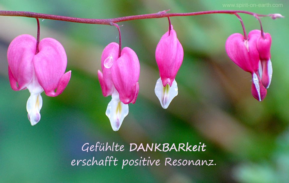 Resonanzgesetzt - Law of Attraction