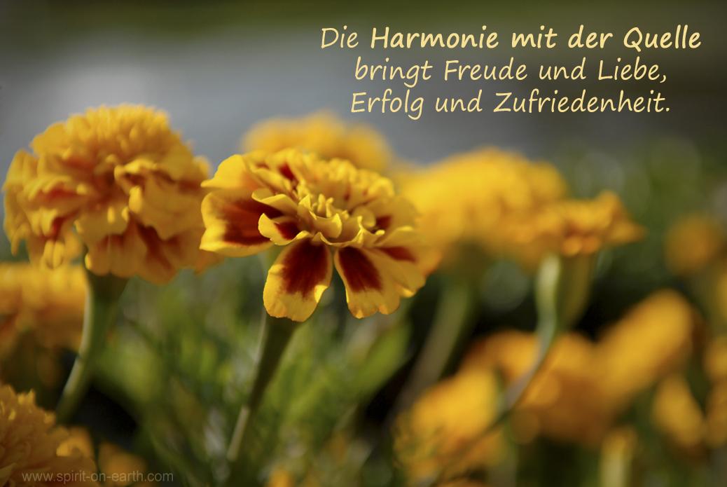 Harmonie-Freude-Resonanzgesetz