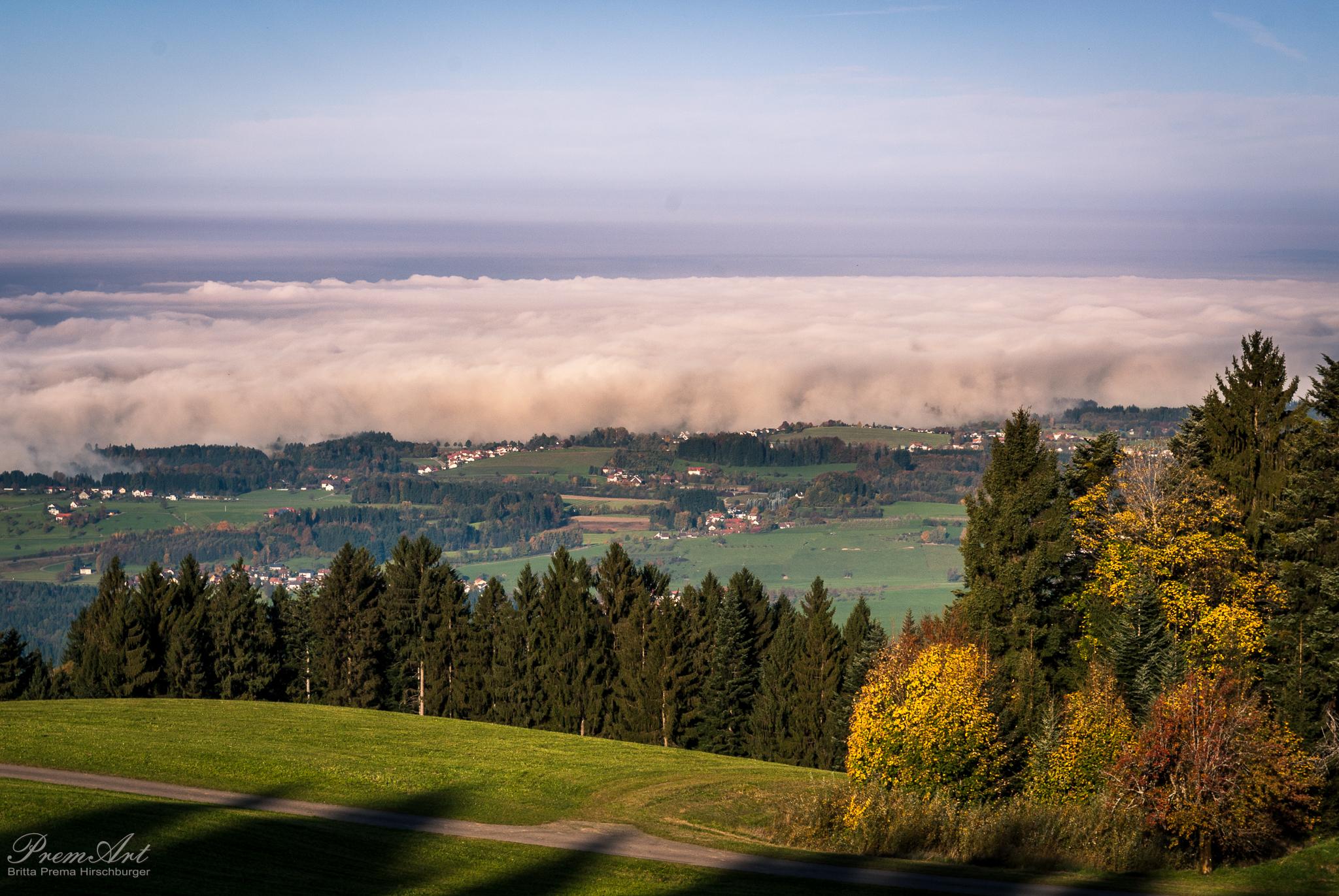 Nebel am Bodensee - Klarheit erlangen