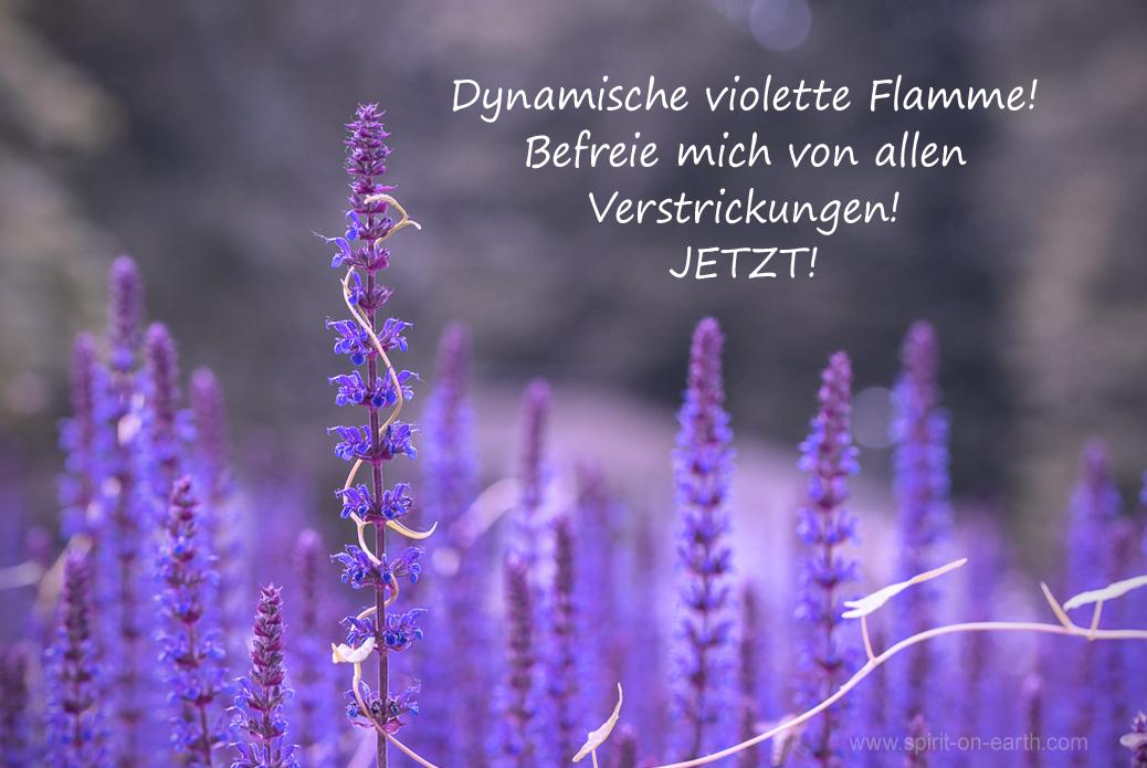 violette Flamme