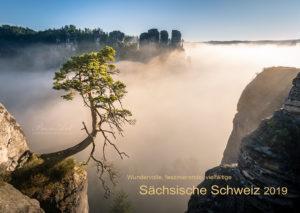 Pölkingkiefer - Kalender 2019 Deckblatt - Sächsische Schweiz