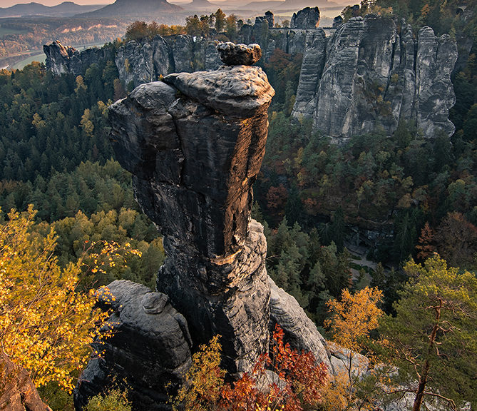 Wehlnadel Sächsische Schweiz Herbst