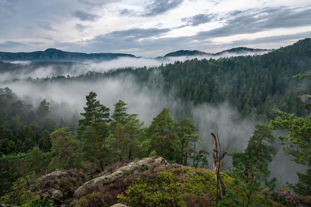 Fotografie Sächsische Schweiz Nebel
