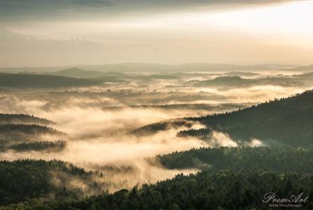 Nebelland Sächsische Schweiz 001