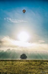 Ballon über den Elbwiesen in Dresden