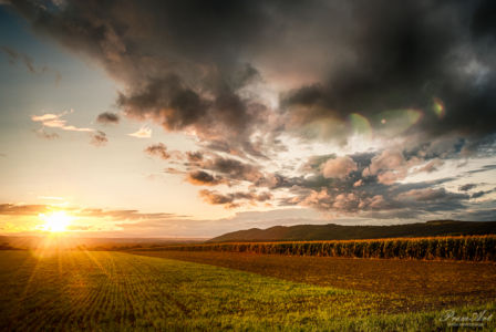 Sonneuntergang über dem Dresdner Elbtal