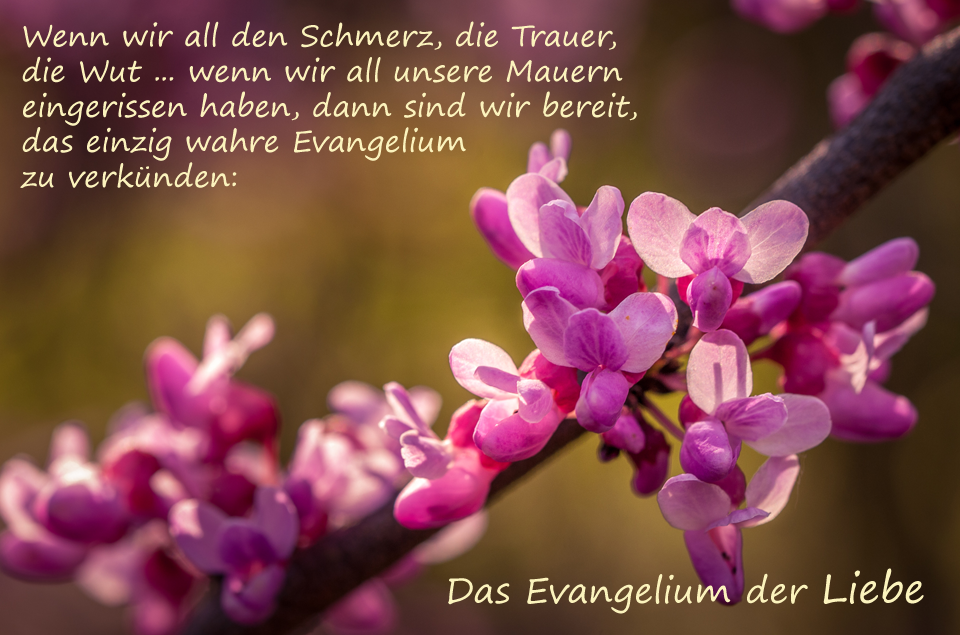 Evangelium der Liebe