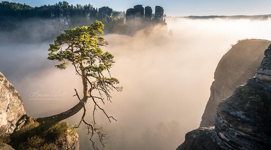 Kalender 2019 - Sächsische Schweiz